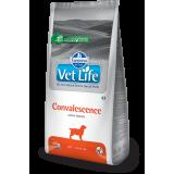 Farmina Vet Life Dog Convalescence (для собак в период восстановления)