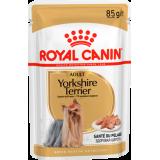 RC Yorkshire Terrier Adult паштет (для собак породы йоркширский терьер)