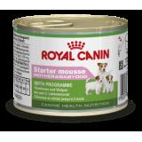 RC Starter Mousse (мусс для щенков до 2-х месяцев, беременных и кормящих сук)